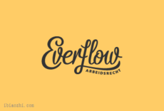 EVERFLOW字体LOGO