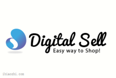 DigitalSell标志LOGO